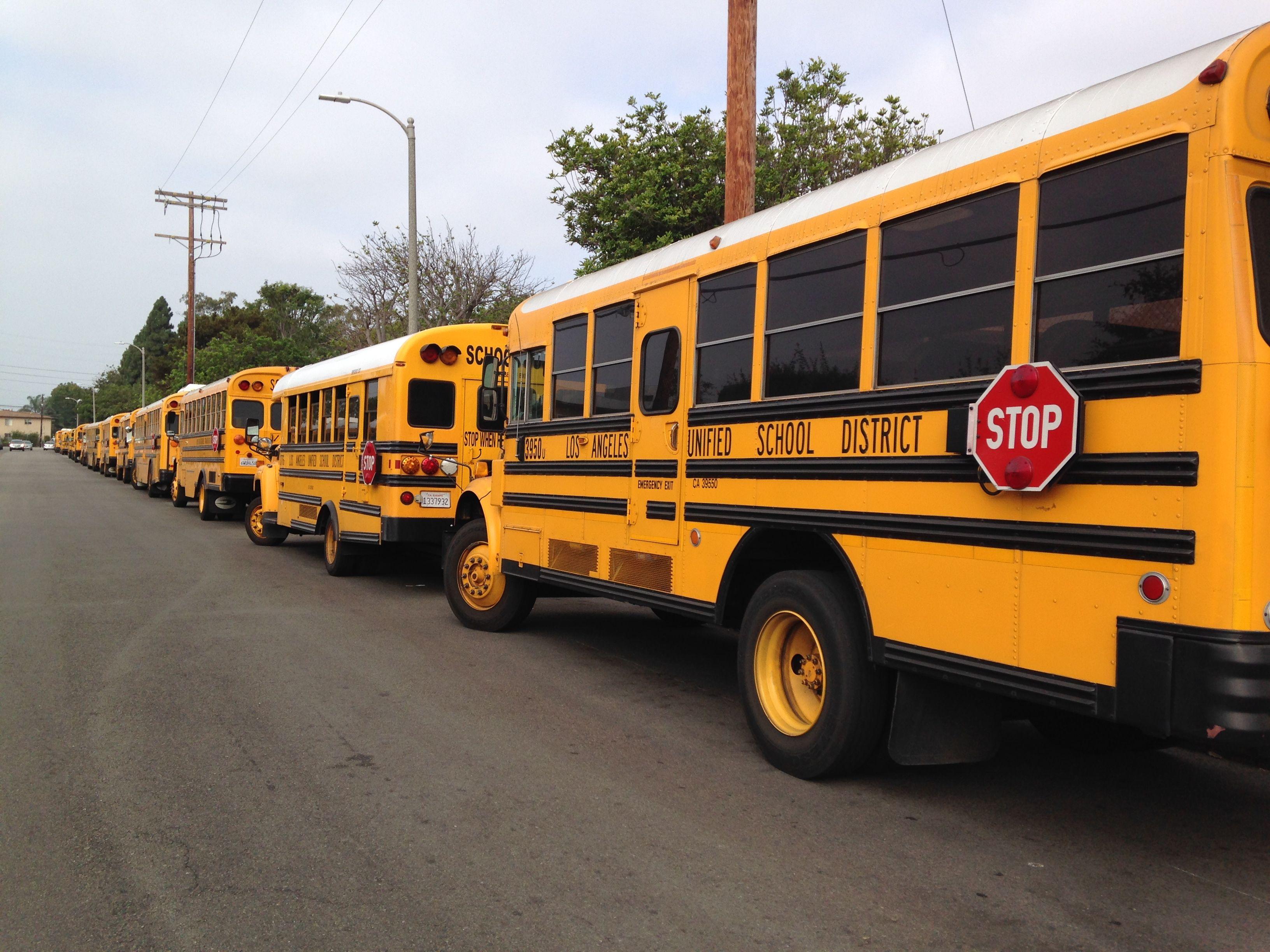 Schools in Mar Vista